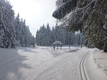 74 km Loipen auf einer Höhenlage von 750 bis 1.050 m mit acht verschiedenen Loipen unterschiedlicher Schwierigkeitsgrade steht dir im Langlaufzentrum Sankt Englmar zur Verfügung.