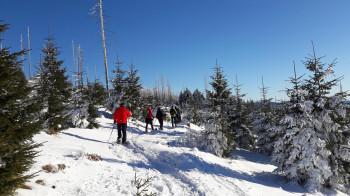 Genieße die wunderschöne, verschneite Winterlandschaft des bayerischen Waldes.