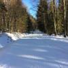 Die Haidelloipen bieten Anschluß an das Loipennetz von Haidmühle, Altreichenau, Herzogsreut und an die Bayerwaldloipe.