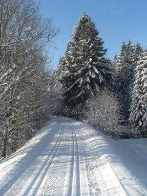 Langlaufen in Neureichenau
