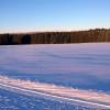 Beim Langlaufen kannst du die tolle Aussicht zu den Bayerwaldbergen genießen.