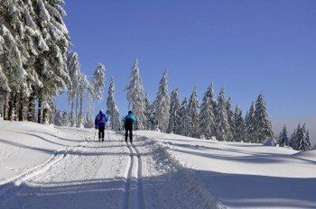 The cross-country skiing tracks in Oberhof comprise up to 50km in length.