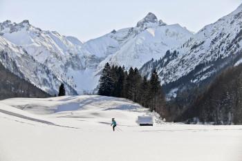 Strecken mit Blick auf verschneite Alpen