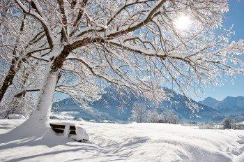 Die idyllische Winterlandschaft des Chiemgaus.