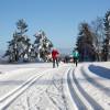 Im Loipengebiet Schwarzwaldhochstraße ist klassisches Langlaufen, aber auch Skating möglich.