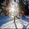 Die Loipen führen dich durch die verschneite Winterlandschaft des Nordschwarzwald.