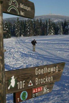 44 Loipenkilometer verlaufen rund um St. Andreasberg.