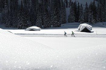 Die Loipe Ehrwald B4 führt Langläufer durch eine traumhafte Winterlandschaft.