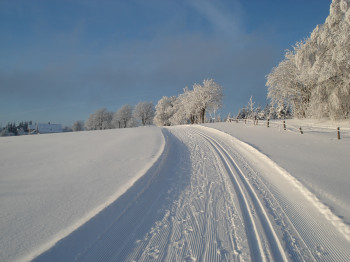 In Altastenberg gibt es drei Langlaufloipen.