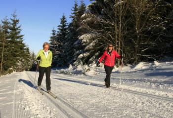 Am Bremberg bei Winterberg hast du fünf Loipen zur Auswahl.
