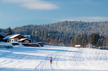 Genieße die verschneite Winterlandschaft rund um Zwiesel.