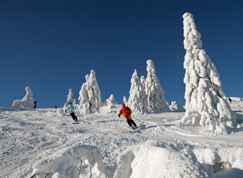 Schneehohen Bayerischer Wald Schneebericht Offene Pisten Lifte