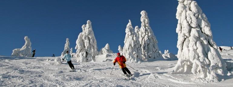 Der Arber ist der höchste Berg des Bayerischen Waldes