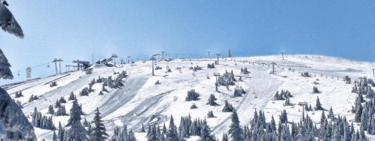 View of the slopes of Kopaonik